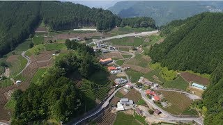 DJI S800evo,GH3,Japanese Tea Farm 空撮