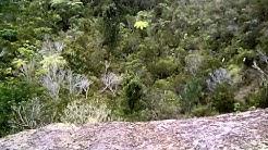 Carina Rock, Coroglen, New Zealand.