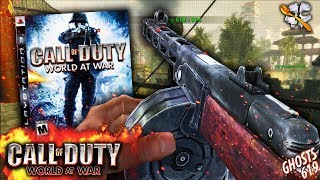 Call of Duty World at War in 2018...