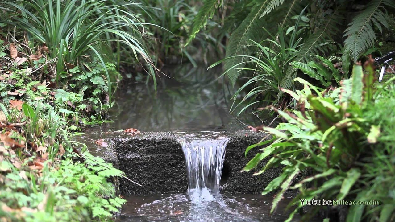 Wasser Plätschern