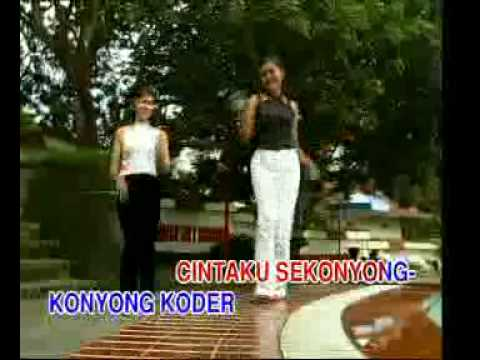 Jawa Didi Kempot - Cintaku sekonyong-konyong koder (IPH's video collections)