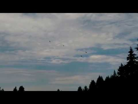 Military Helicopters over my house (CH-53 & CH-47)