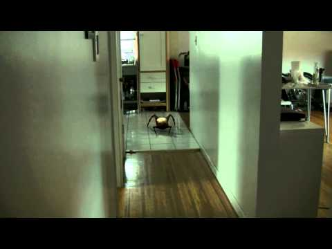 Headcrab In The Hallway - Half Life 2 Model Match Move Composite