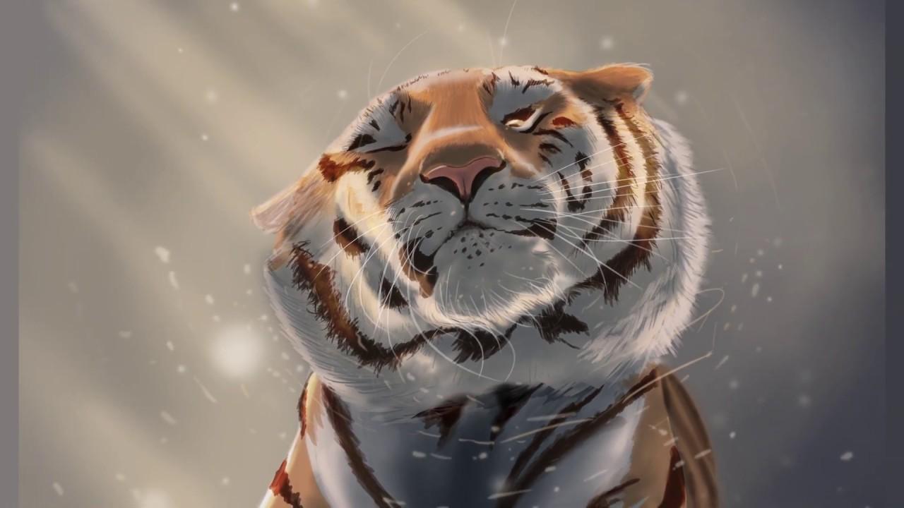 картинки тигров из игр месте