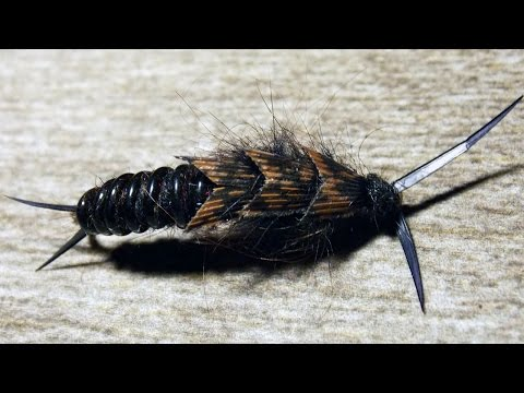 Kauffmann Stone - stonefly nymph fly tying instructions by Ruben Martin