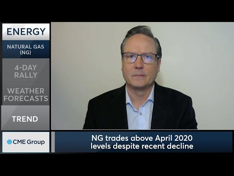 April 12 Energy Commentary: Dan Deming