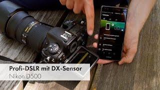 Nikon D500 - Bildrauschen, 4K-Video, WiFi, Autofokus und Co im Test [Deutsch](Mit über 2.000 Euro ist die Nikon D500 [http://vturl.de/D500]* alles andere als ein Schnäppchen. Dafür bekommen ambitionierte und Profi-Fotografen jedoch ..., 2016-06-12T09:00:00.000Z)