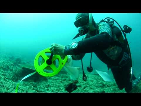 National Geographic Pristine Seas Expeditions | Mozambique