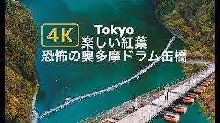 ドローン 空撮 !奥多摩湖「ドラム缶橋」絶景 紅葉 4k DroneJapan Tokyo Autumn