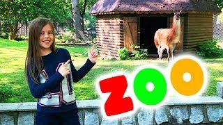 Влог ЗООПАРК в ПОЛЬШЕ Развлечение для Детей Poland ZOO  Вики Лайф
