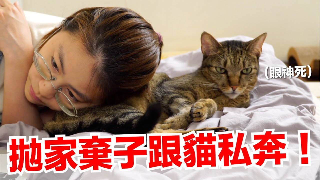 【好味小姐】不管了!拋家棄子跟貓私奔!|好味貓日常EP109