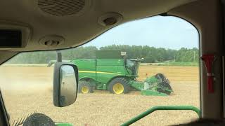 2019 wheat harvest in full swing