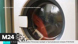 Центр помощи бездомным хотят открыть в Беговом районе - Москва 24