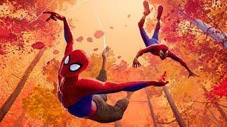 'Spider-Man: Into the Spider-Verse
