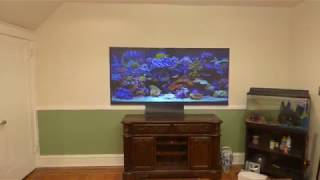 DESIGN YOUR OWN OLED TV LIKE WALLPAPER THIN PROJECTION SCREEN