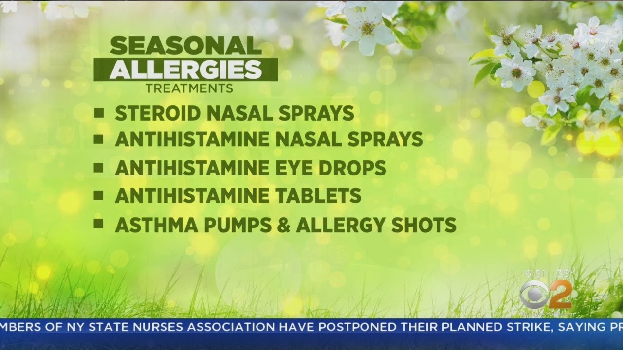 What You Need To Know To Survive The Spring Allergy Season