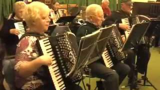 Swansea Accordion Orchestra - The Sound of Music