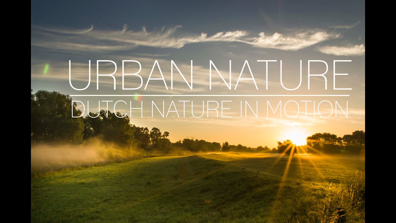 Urban nature dutch nature in motion timelapse youtube for Urban nature