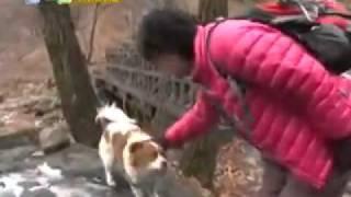 TV 동물농장 478회 2부_13