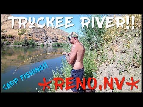 Truckee river carp fishing *RENO,NV* Part1