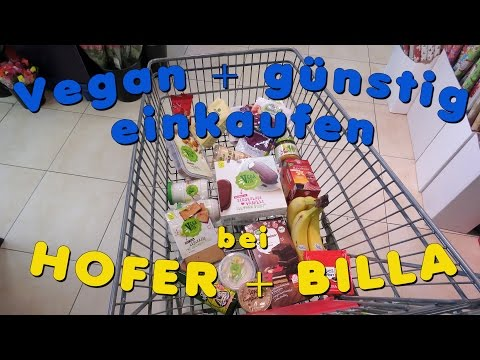 BILLA + HOFER HAUL | Vegan + günstig einkaufen in Österreich