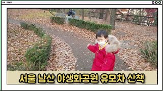서울 남산공원 야생화공원 유모차 나들이