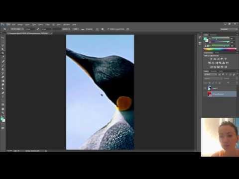Обрезать картинку в Фотошоп — вырезать часть фотографии заданного размера, фото на документы