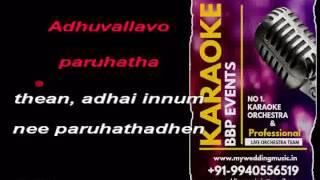 Ninaivo Oru Paravai HQ Video Karaoke (BBP Karaoke)