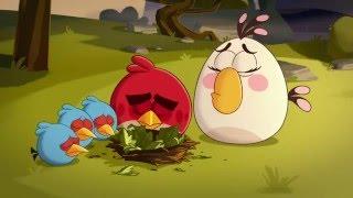 Злые птички - Энгри Бердс - Птица, которая кричала «свинья!» (S1E25) || Angry Birds Toons