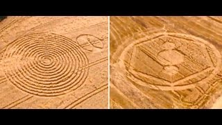 2-crop-circles-crop-up-on-the-same-day-in-brazil