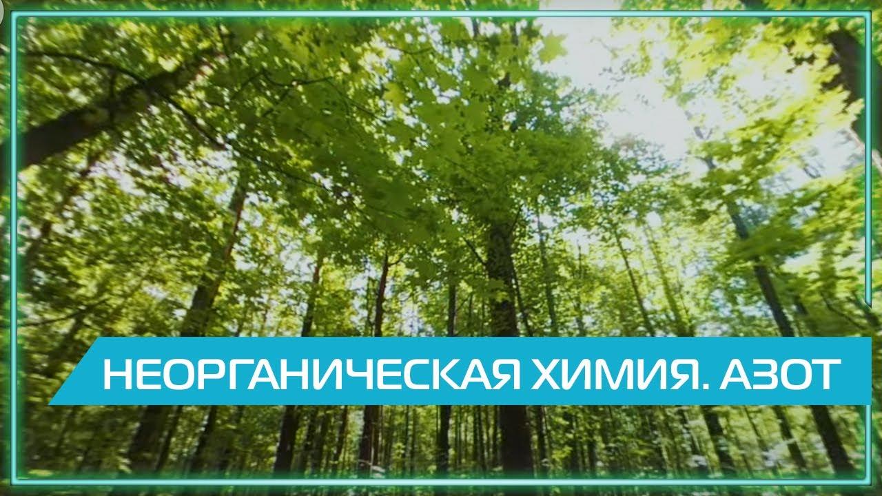 Видео 360 | Неорганическая химия. Азот.