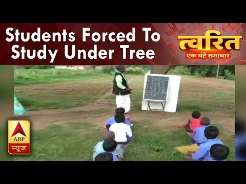 Twarit Dukh: Devoid of school, students forced to study under tree in Chhattisgarh`s Jagima