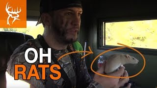 Download LUKE BRYAN gets BIT by a RAT!!! Mp3 and Videos