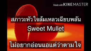 สภาวะหัวใจล้มเหลวเฉียบพลัน – Sweet Mullet (เนื้อเพลง)