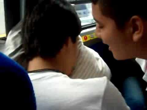 Kalab Kissing Bob