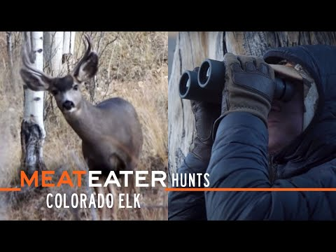 MeatEater Hunts Ep. 2: Colorado Elk With MeatEater Producer Janis Putelis