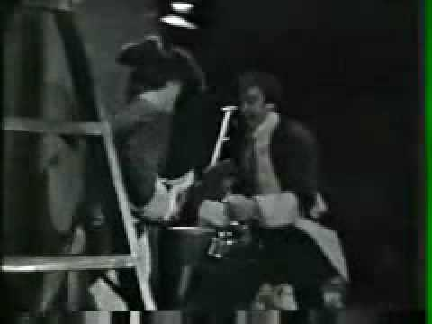 PAUL REVERE & THE RAIDERS-'LOUIE, LOUIE'.wmv mp3