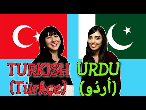 Similarities Between Turkish and Urdu