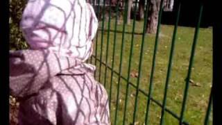 parc cigognes