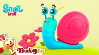 Snail Trail | Nursery Rhymes & Songs for kids | BabyTV