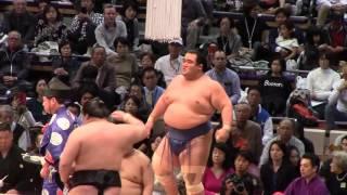 大相撲九州場所7日目、大関琴奨菊vs大関豪栄道.