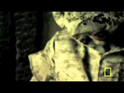 Death From Haitian Marine Boot Camp