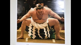 Welcome to the November 2018 Grand Sumo Tournament