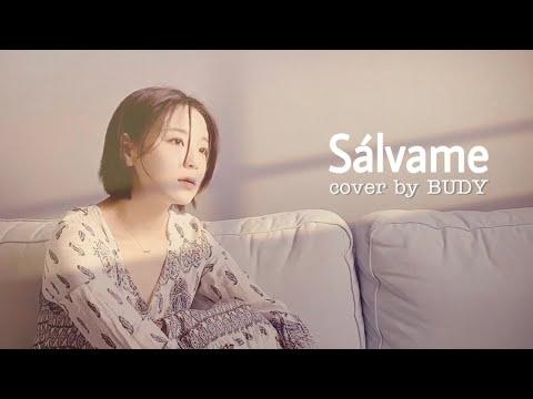 RBD - Sálvame cover by BUDY