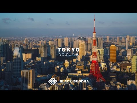 Welcome to Tokyo | Black Buddha