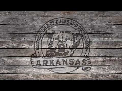 Arkansas: A Tale of Ducks and Dogs: Episode 2 Working The Timber Hole