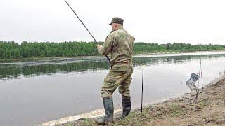 Ловля рыбы на фидер Отловились неплохо Рыбалка на реке Вычегда Республика Коми