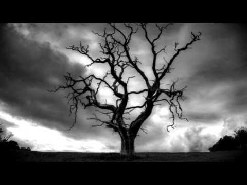 Frozenwoods - Under Vault of the Ancient Trees