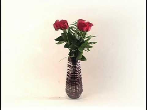 Vazu Usa Expandable Flower Vase Youtube