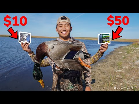 CHEAP vs EXPENSIVE Shotgun Shell Duck Hunting Challenge! (Which is Better?)